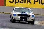 Frank V's 1966 GT 350 Ford Mustang
